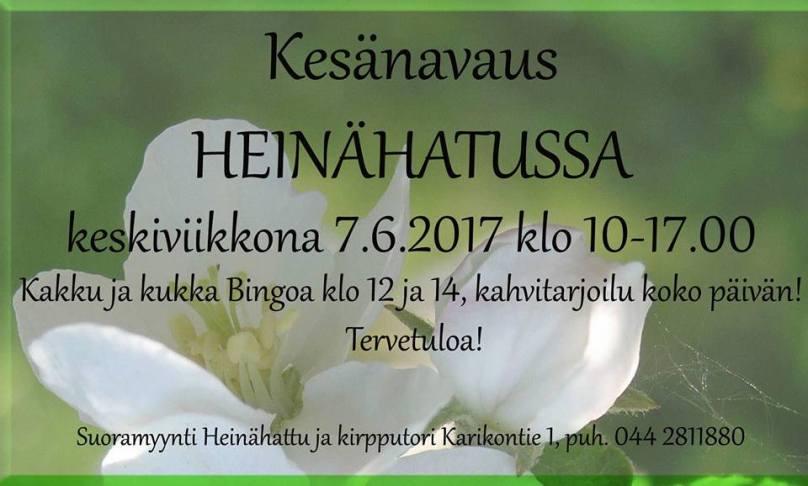 heinisKesa17